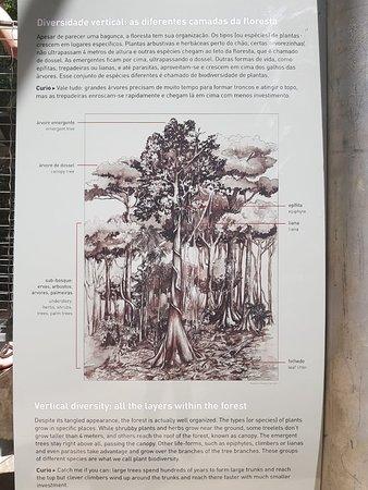 Museu da Amazonia (MUSA) 사진