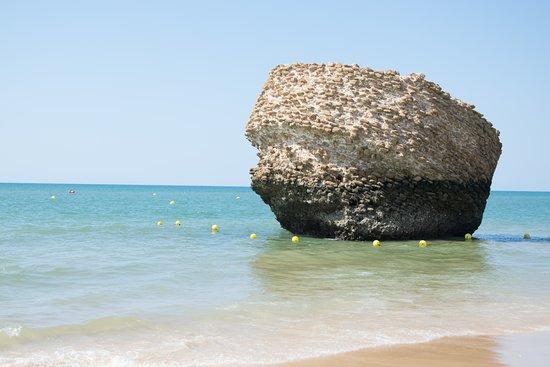 Playa de Matalascanas