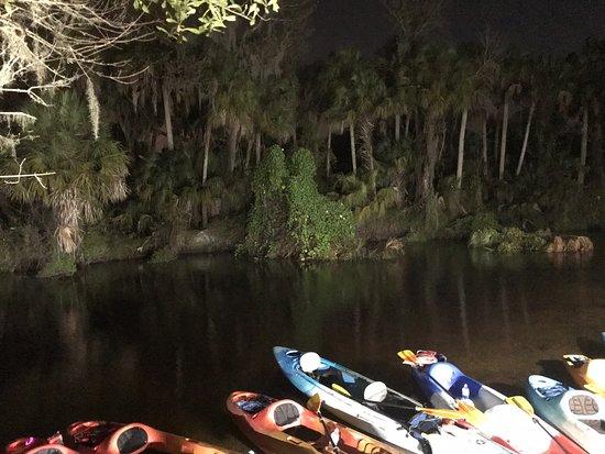 Снимок Canoe Outpost - Little Manatee River