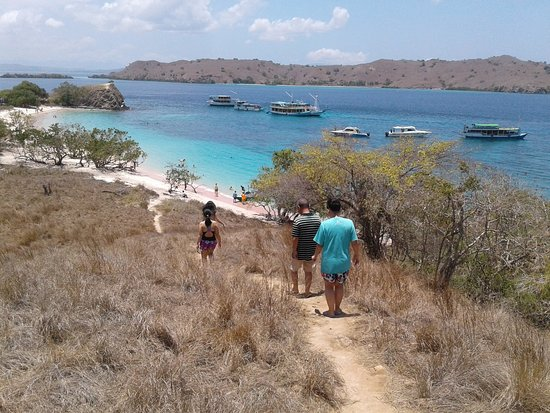 Another 3 days to Komodo National Park @2018.