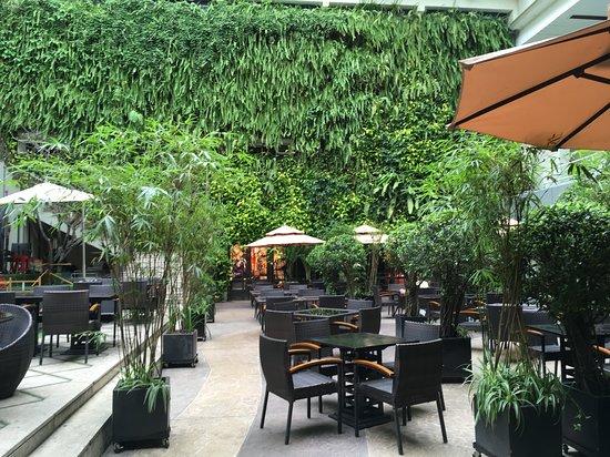Rex Hotel: Garden restaurant