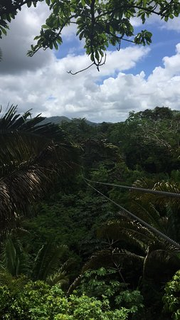 Chabil Mar Guest Exclusive Resort: Zip lining