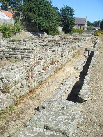 vestiges archéologiques du fort romain de Piercebridge