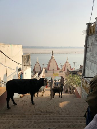 Kashi Journeys: Visitors in front of our hotel, on the river.