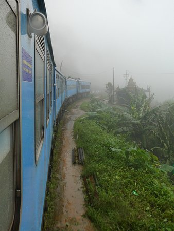 Travelling by train from Ella to Haputale- stunning!