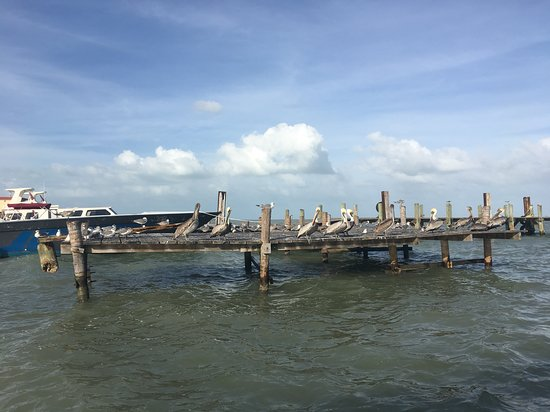St. George's Caye, Belize: Leaving the mainland for the island.