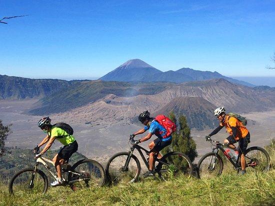 Bali Rides