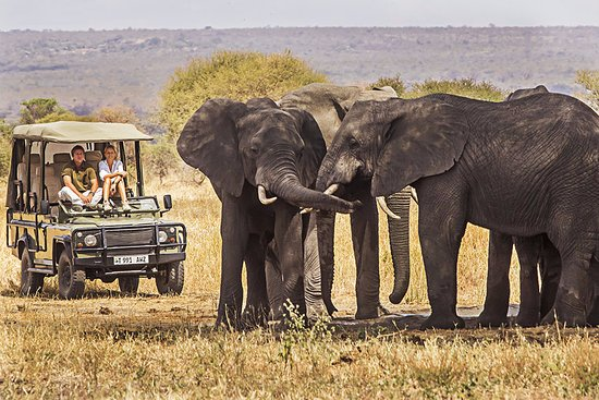 Swahili Paradise Tours & Safaris