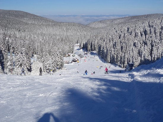 Ski piste Rogla