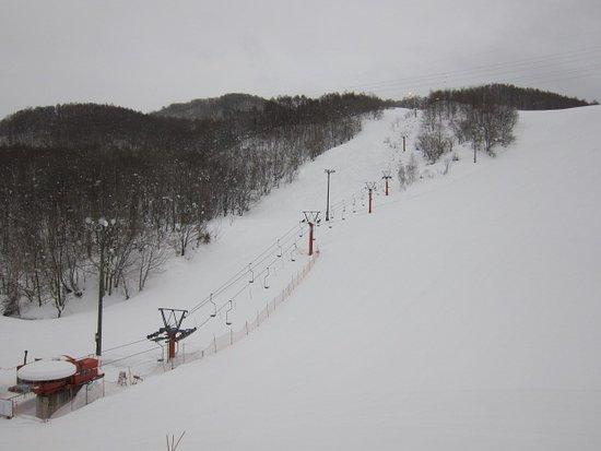Niki Townsmen Ski Resort