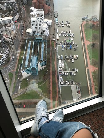 Вид с башни