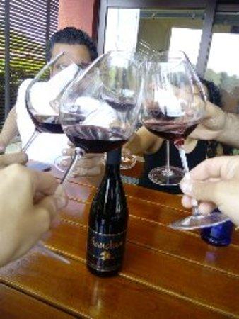 Wine tour to Styria wine region in Slovenia