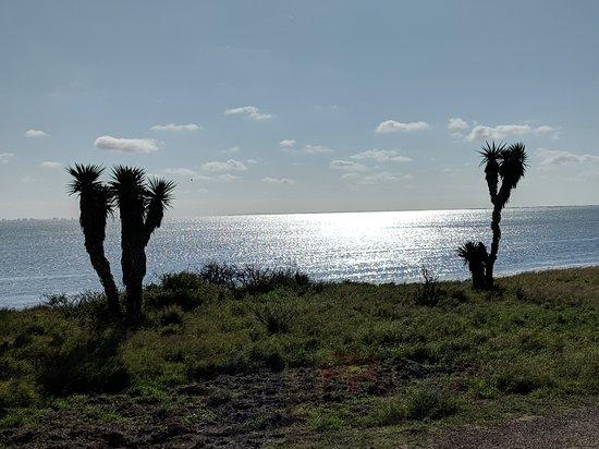 Texas Gulf Coast, TX: Bayside drive.