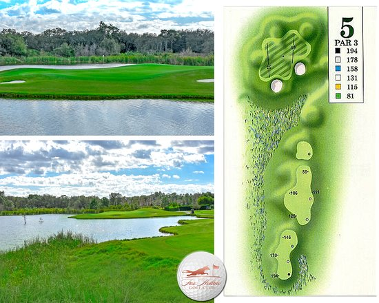 5tht Hole Fox Hollow Golf Club http://foxhollowgolfclub.com  #foxhollowgolfclub #FHGCFL