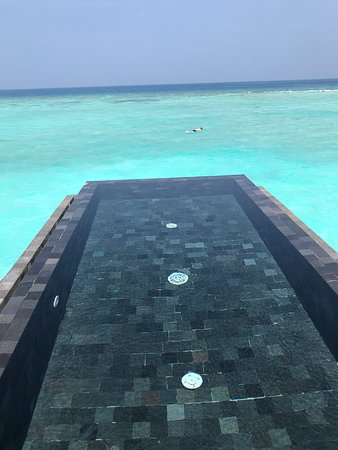 Noonu Atoll: Don't need to share your pool