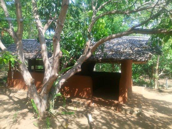 Pulathisi Arana Ayurvedic Centre