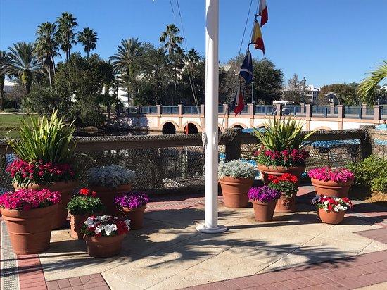 Disney's Old Key West Resort: beautiful flowers