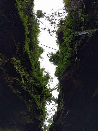 Canyoning Experience: Canoying