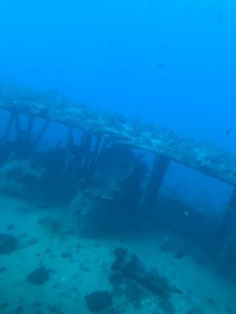오아후 섬 아틀란티스 잠수함 모험 사진