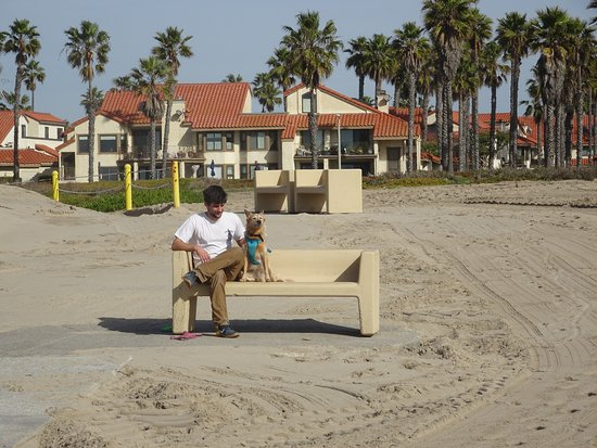 Oxnard State Beach and Park: Man and best friend spending quality time together