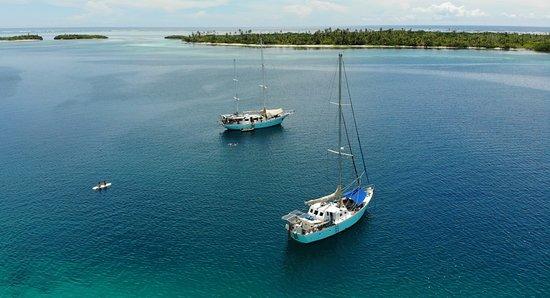 Wild Card Sailing