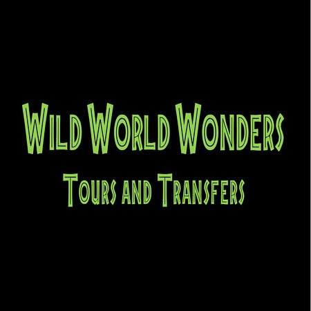 La Cruz, Costa Rica: Wild World Wonders Tours and Transfers is a Tour Company dedicated to provide high quality tours and transportation