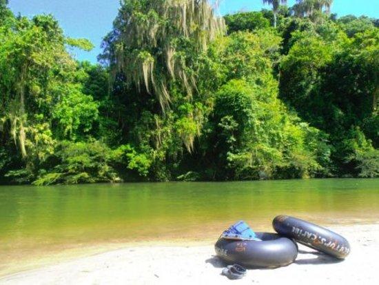 Explora Santa Marta Travel Viajes y Turismo: Rio on Diego: Durante el recorrido podrás observar los micos aulladores, variedad de aves, mariposas y hasta los picos nevados! Luego atracaremos en la playa, virgen y poco explorada de gran belleza escénica y natural.