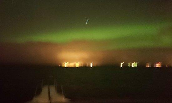 Croisière aux aurores boréales au départ de Reykjavik : Northern lights