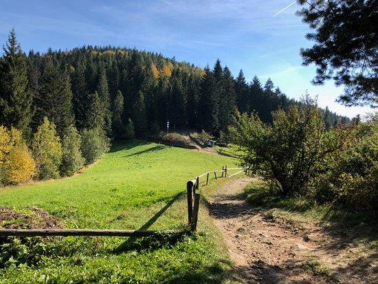 Gorczanski Park Narodowy: Krajobraz z Gorców