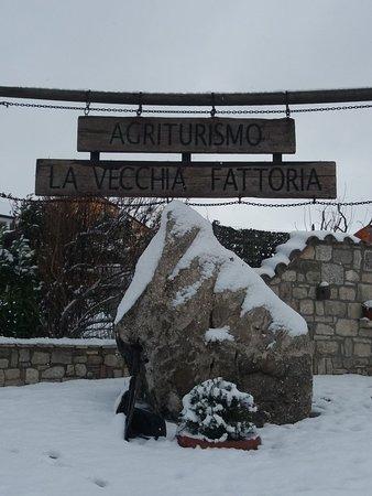 La Vecchia Fattoria Agriturismo: Neve....