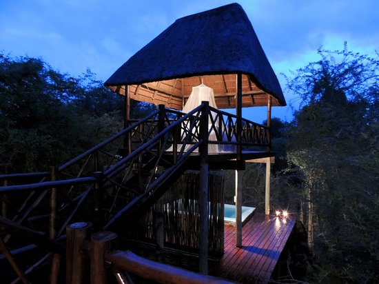 For a night under the African skies, head over to the lookout