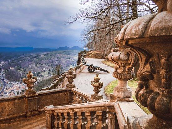 Wusstest du, dass die Festung Königstein eine der größten Bergfestungen in Europa ist? Sie liegt mitten im Elbsandsteingebirge und von hier oben hast du fantastische Aussichten auf die Umgebung. Lass' doch mal ein Like da, wenn du schon dort warst!
