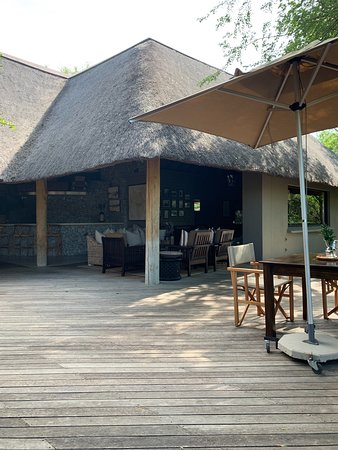 Londolozi Private Game Reserve, South Africa: Terrace