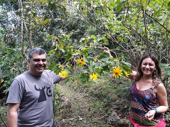 Frutos Pachamama: visitantes que descubren en las flores plantas medicinales...descubrimientos botánicos para ellos.