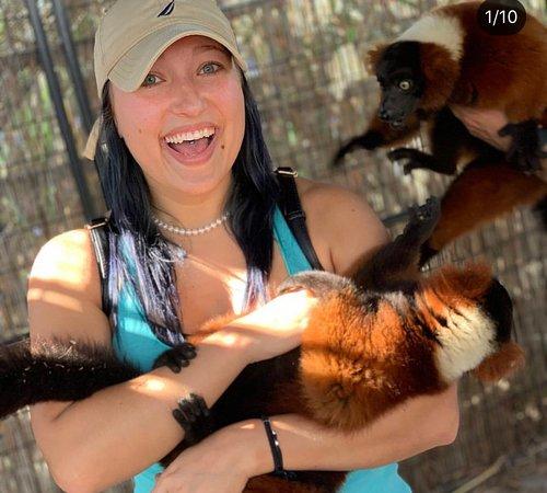 Boynton Beach, Флорида: Lemur EDventure