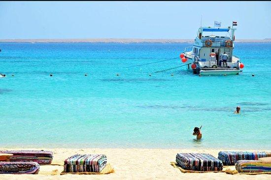 Blue Bird Excursions Hurghada