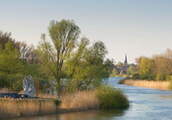 Vaar mee op de Schelde met haar mooie getijdennatuur, langs Hamme, Sint-Amands,...