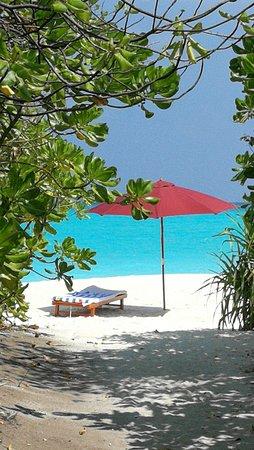 Hondaafushi Island Resort: plage vue du bungalow, avec transat et parasol fournis