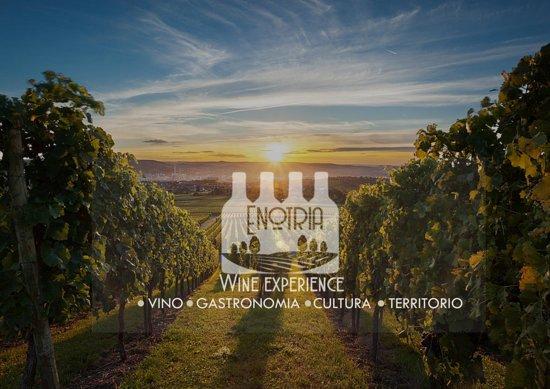 Enotria Wine Experience