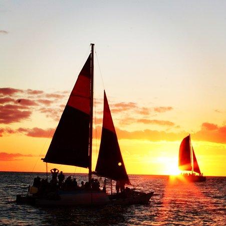 Pink Sails Waikiki