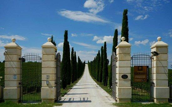 Cantalupo, Italy: Il nostro ingresso