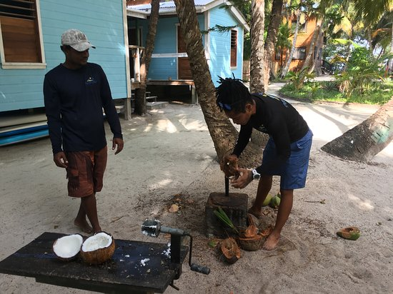 South Water Caye, Belize: Charlie and Staci showed us how to get the delicious meat out of the coconuts, so good!