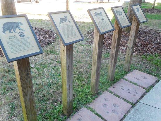 Jennings, FL: FL Mammal Paw Prints