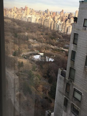 View of Central Park from our bedroom