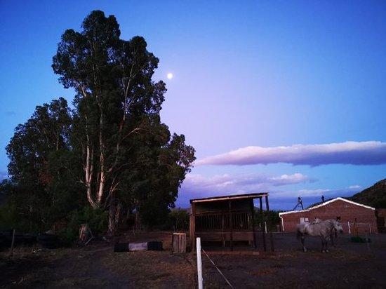 Deirdre Scott-Rogerson Riverstone Farm Retreat