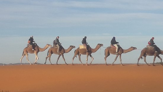 Meknes-Tafilalet Region, Maroko: Traditional transport in desert