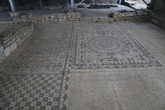 Risan Mosaic: Roman Mosaics in Risan, Montenegro.