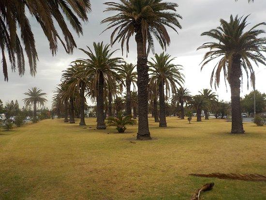 Robinson Reserve