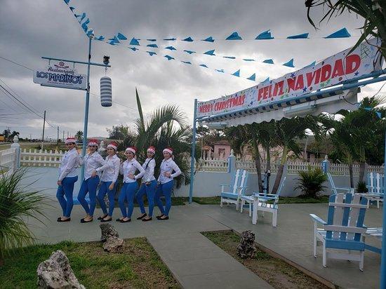 Santa Cruz del Norte, Kuba: Algunos de nuestros platos