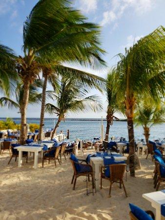 The Flying Fishbone: Beachside dining